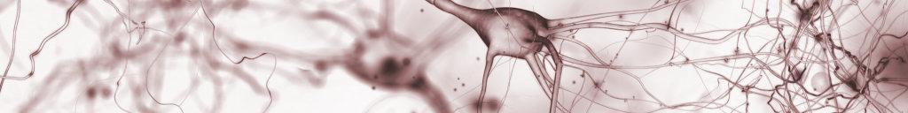NeuroRhythms